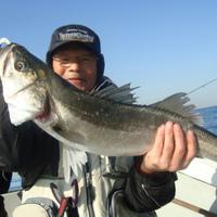 5日釣果情報のサムネイル