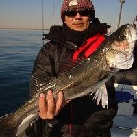 釣り日和のサムネイル