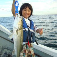 東京湾シーバスボートのサムネイル