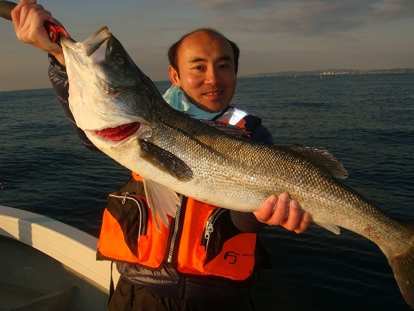 連日80cmまで釣れてます。