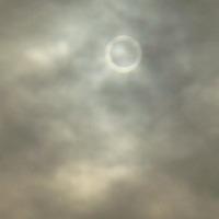 金環日食のサムネイル