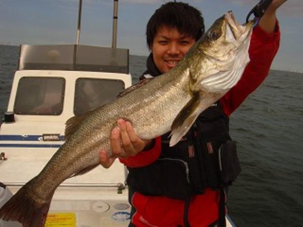 シーバス釣れます。
