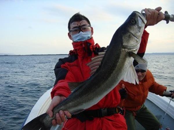 数釣りの季節