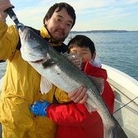 2013 元旦 釣果情報のサムネイル