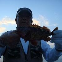 夜メバル便、青イソメ(胴付き仕掛け)のサムネイル