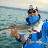 2月8日、釣果情報のサムネイル