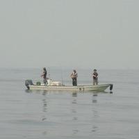9日 シーバス午後便&SPEEDの釣果情報のサムネイル