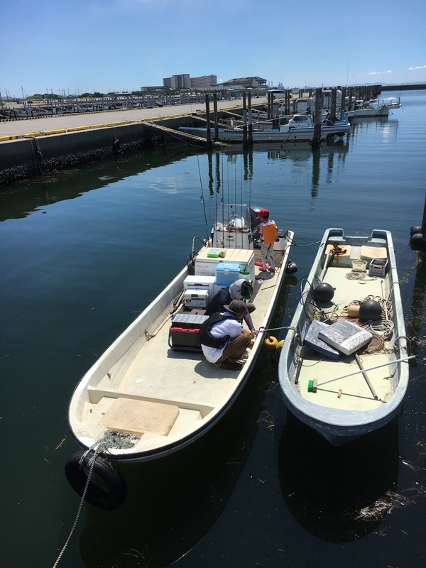 8月6日、夏休みシロギス釣り