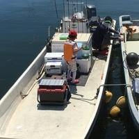 8月6日、夏休みシロギス釣りのサムネイル