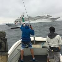 東京湾シーバス&タチウオのサムネイル