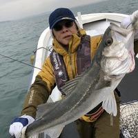 出船しないと釣果が無いので、、、釣れてます(笑)のサムネイル