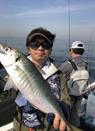 魚も潮に慣れるまでは?人も暑さ対策をお願いします。