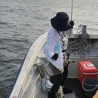 週末の釣果のサムネイル