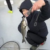 日曜日の釣果のサムネイル