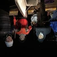 夜メバル、アオイソメ釣り!のサムネイル